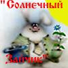 декоративные кроли,шиншиллы в Украине.