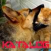 Каталог сайтов о животных,доска объявлений